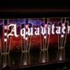 星風まどかのショーでもある『アクアヴィーテ!!』感想2 キュートな魅力がたまらない